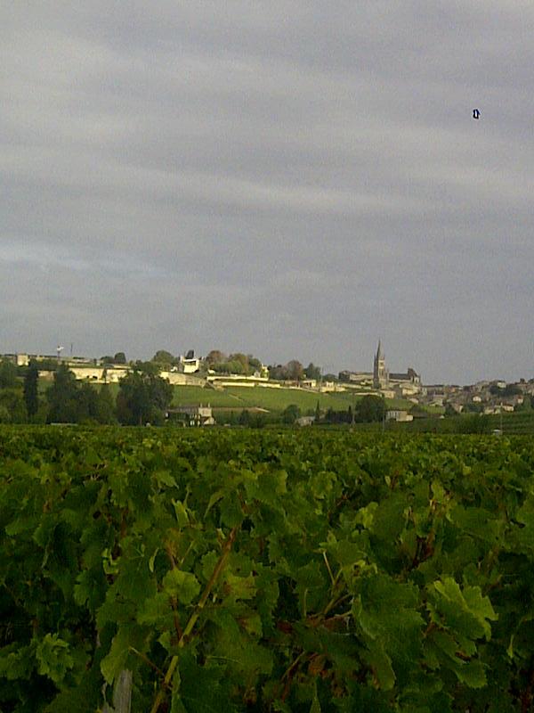 Saint-Emilion-20120924-02139