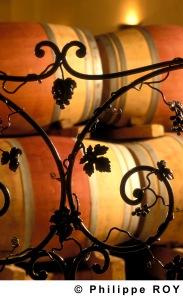 Le vignoble Bordelais