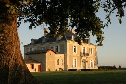 02_Château vu des vignes