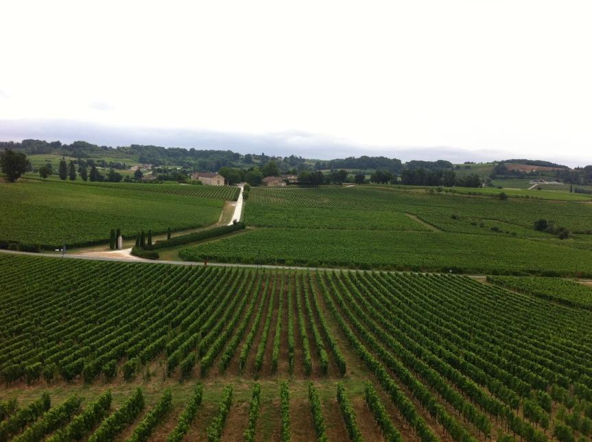 Simplifying St Emilion WineRegion