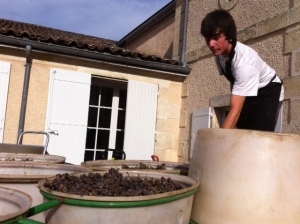 Yquem 2013: I will exist!