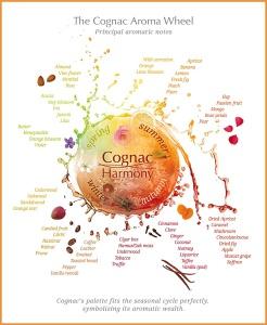 cognac_roue_aromes_600_en