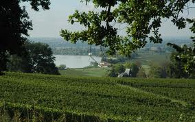fronsac view
