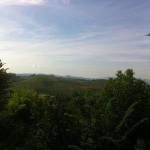 View from Gaja in Barbaresco towards Barolo
