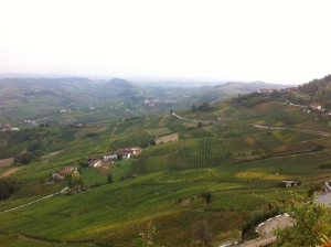 View of Barolo Vineyards from La Morra