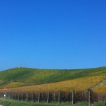 Visiting Barolo – a day with mySister