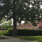 Behind the Pink Walls on the Route de Châteaux in theMedoc